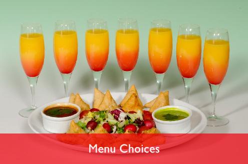 Radha-menu-choices-banner-3-496x329.jpg
